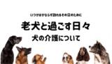 inu_kaigo1